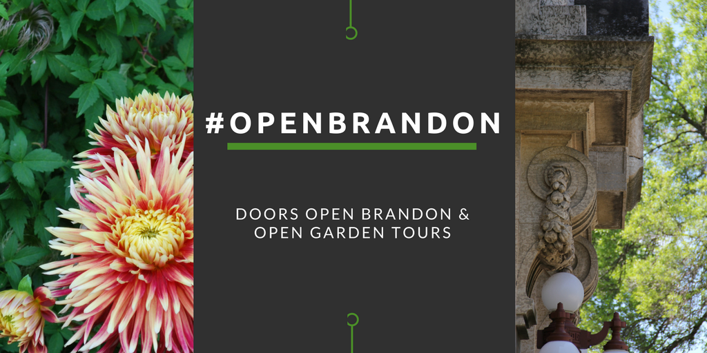 openbrandon website